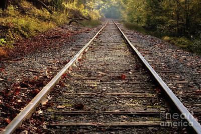 Photograph - Railway by Patrick M Lynch