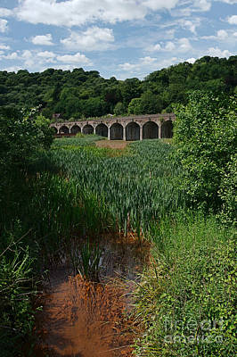 Coalbrookdale Photograph - Railway Viaduct At Coalbrookdale by Mickey At Rawshutterbug