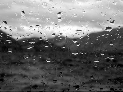 Photograph - Rain And Wind by Trance Blackman
