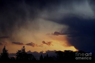Art Print featuring the photograph Rain At Sunset by Erica Hanel