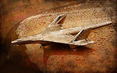 Digital Art - Rain Bird by Greg Sharpe