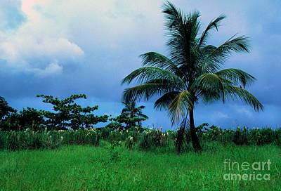 Rain Cloudsover Dominica Art Print by Thomas R Fletcher