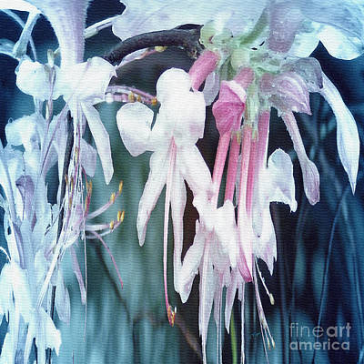 Raindrops Dance Photograph - Rain Dance - Blue by Anita Faye
