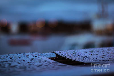 Photograph - Rain Droplets On Bench by Marc Daly