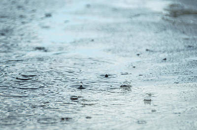 Photograph - Rain Drops In A Puddle by Dutourdumonde Photography