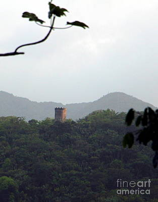 Rain Forest Puerto Rico Yokahu Observation Tower Art Print by Charlene Cox