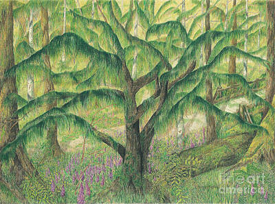 Rain Forest Washington State Art Print by Vicki  Housel