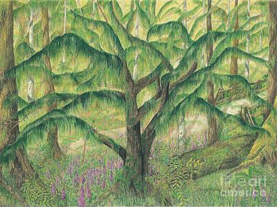 Rain Forest Washington State Art Print