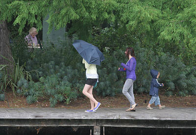 Photograph - Rain In The Park by Masami Iida