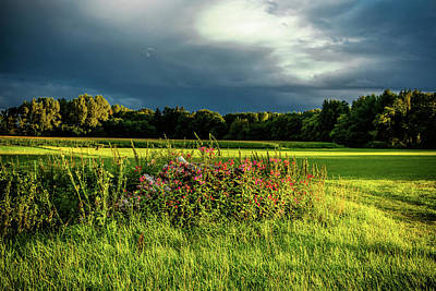 Photograph - Rain Is Coming by Holger Debek