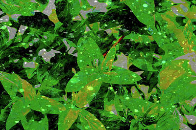 Digital Art - Rain On The Leaves by Aliceann Carlton