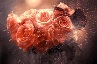 Rainy Day Photograph - Rain Red Roses by Jenny Rainbow
