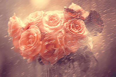 Rainy Day Photograph - Rain Red Roses Pastel by Jenny Rainbow