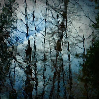 Photograph - Rain Trees by Patricia Strand