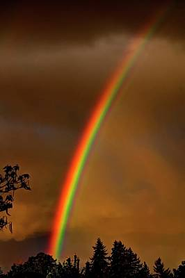 Jerry Sodorff Royalty-Free and Rights-Managed Images - Rainbow 1 by Jerry Sodorff