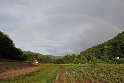 Photograph - Rainbow by Allen Nice-Webb