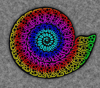 Mixed Media - Rainbow Ammonite by Frank Lee Hawkins