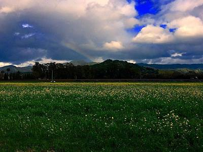 Mars Lasar Photograph - Rainbow And Flowers by Cadence Spalding