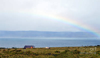 Photograph - Rainbow And Icelandic Horses by Catherine Sherman