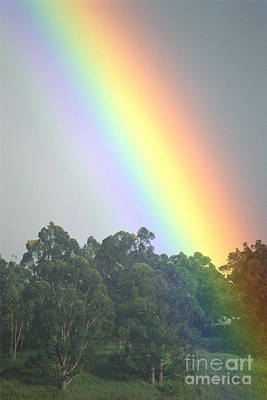 Rainbow And Misty Skies Art Print by Erik Aeder - Printscapes