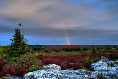 Photograph - Rainbow At Dolly Sods In Morning by Dan Friend