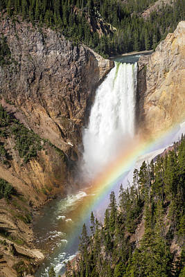 Photograph - Rainbow At Lower Yellowstone Falls by Jack Bell
