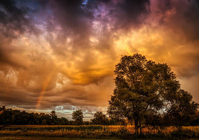 Photograph - Rainbow At Sunset by Lilia D