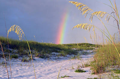 Photograph - Rainbow Beach Path 1 by Marie Hicks