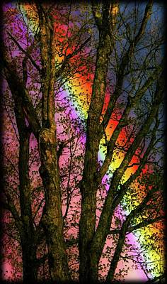 Photograph - Rainbow Beyond by Sherman Perry