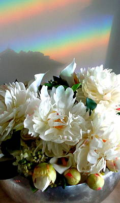 Photograph - Rainbow Buds N' Blooms One by VIVA Anderson