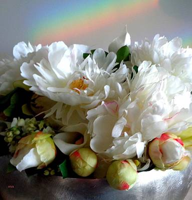 Photograph - Rainbow Buds N' Blooms Three by VIVA Anderson