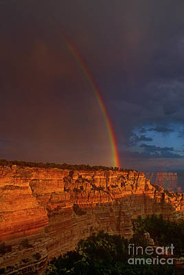 Photograph - Rainbow Cape Royal North Rim Grand Canyon National Park Arizona by Dave Welling