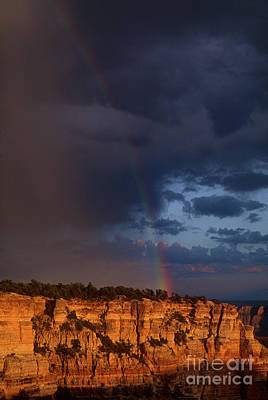 Photograph - Rainbow Cape Royal North Rim Grand Canyon National Park by Dave Welling