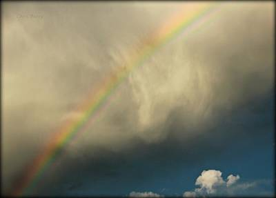 Photograph - Rainbow by Chris Berry