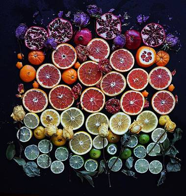 Rainbow Citrus Etc Art Print