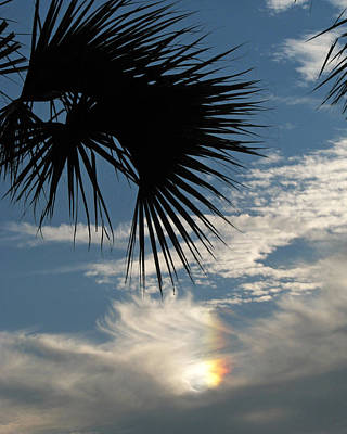 Photograph - Rainbow Cloud by Peg Urban