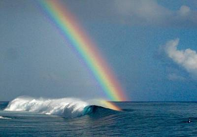 Kelly Slater Photograph - Rainbow Connection by Danny Aab