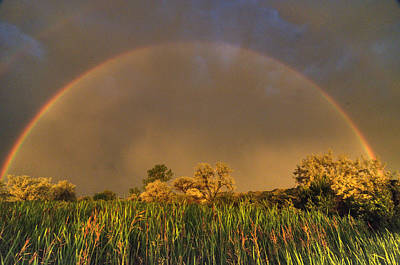 Photograph - Rainbow by Dave Rennie