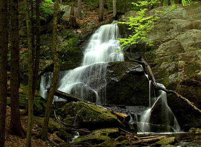 Photograph - Rainbow Falls by Suzanne DeGeorge