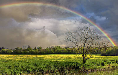 Realistic Photograph - Rainbow Field by Martin Newman