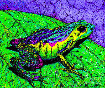 Frogs Drawing - Rainbow Frog 2 by Nick Gustafson