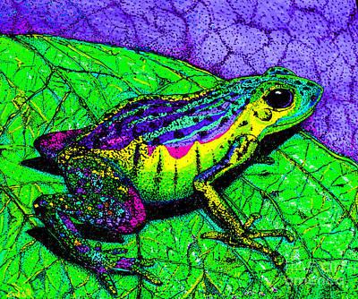 Fantasy Drawings - Rainbow frog 2 by Nick Gustafson