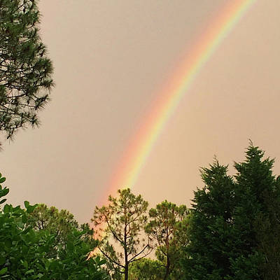 Photograph - Rainbow From Heaven by Matthew Seufer