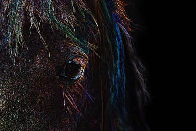 Photograph - Rainbow Horse Eye by Larah McElroy