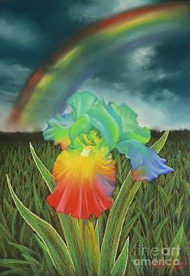 Rainbow Iris Art Print by Louise Green