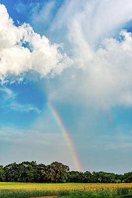 Photograph - Rainbow In Madison by Jack Peterson