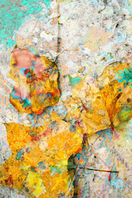 Photograph - Rainbow Leaves Aqua by Suzanne Powers