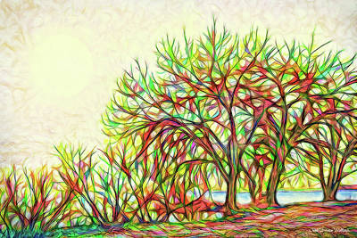 Digital Art - Rainbow Light Trees - Boulder County Colorado by Joel Bruce Wallach