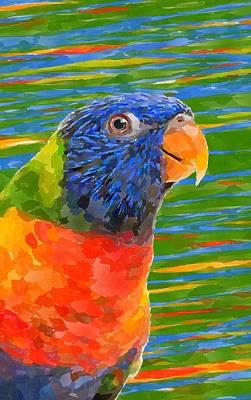 Bird Painting - Rainbow Lorikeet 3 by Chris Butler