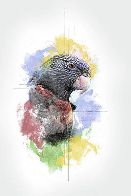 Digital Art - Rainbow Lorikeet by Anja Wessels